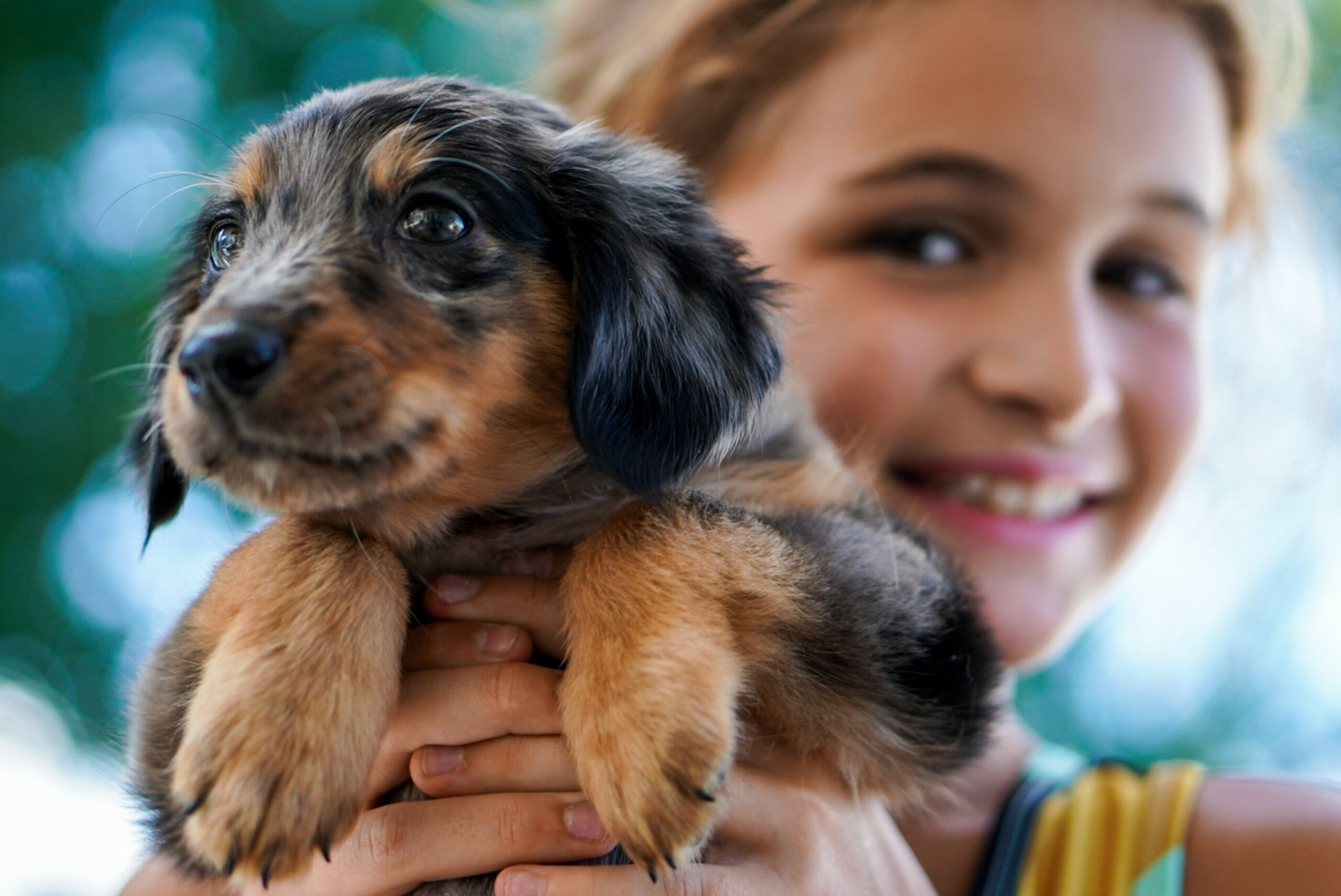 A Girl Holding a Black & Brown Puppy