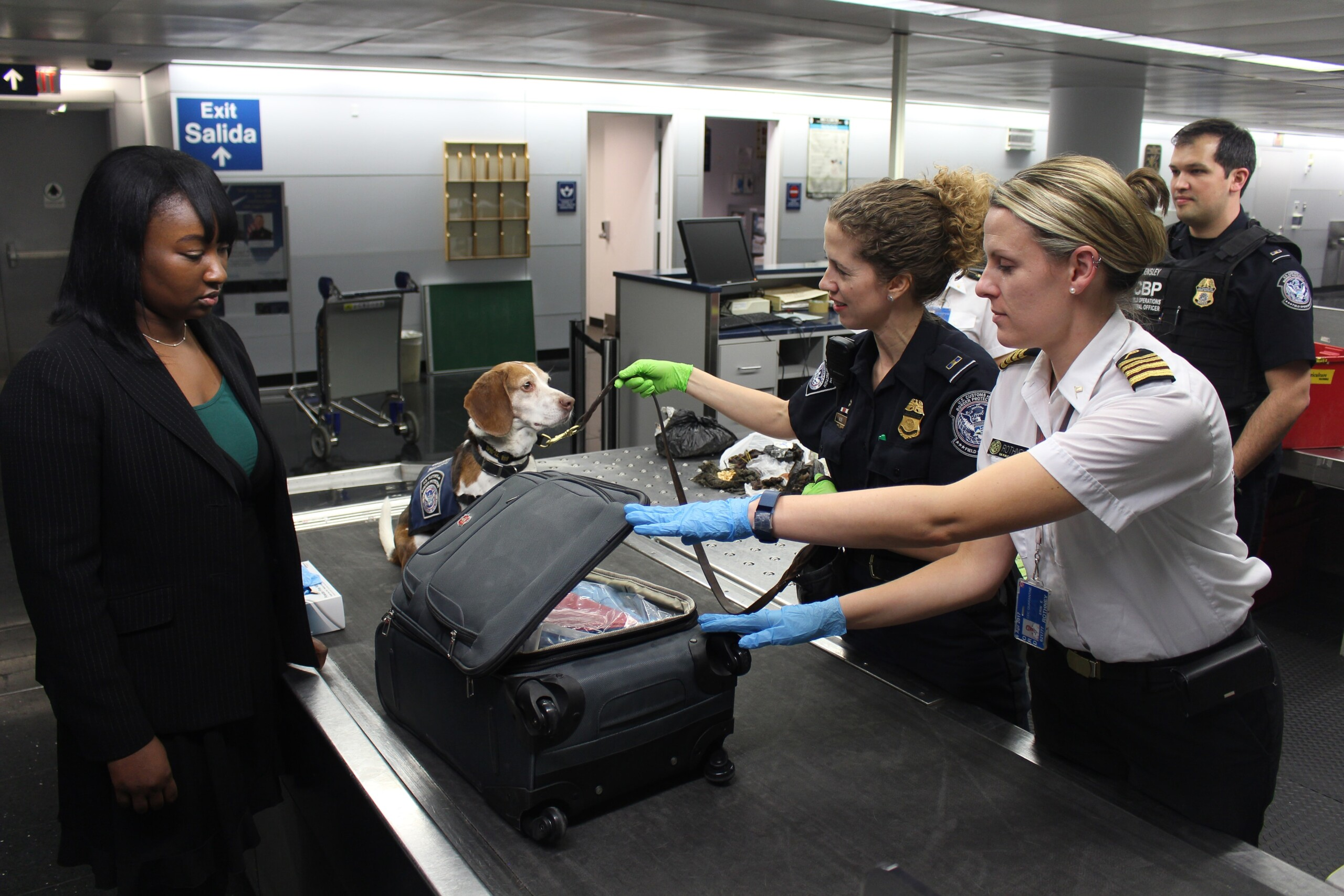 A Dog at a Travel Check-in Point